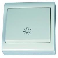 Interruttore pulsante da superficie con simbolo luce bianco, 80x80mm. 10A, 250V