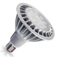 Lampade LED Cob PAR38 1380lm 19W E27 3000K 38º